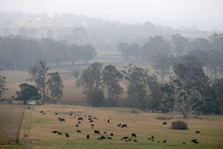 Regen in de buurt van Milton, Australië.
