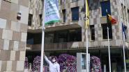 """Willebroek hijst Mayors for Peace-vlag, 75 jaar na atoombomaanvallen: """"Niets is belangrijker dan vrede"""""""