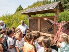 Ook voor bijen is het goed toeven in woonwijk Mannee in Goes