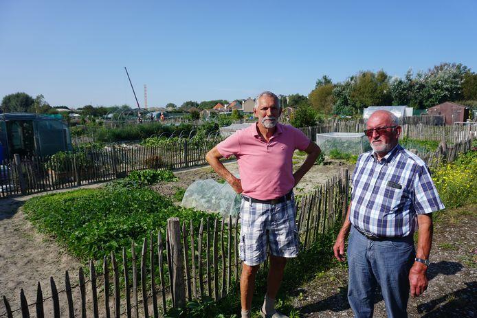 De tuinliefhebbers van volkstuintjes Kluitenduikers in Middelkerke maken zich grote zorgen. Guido Vanassche (rechts) en Marc trekken aan de alarmbel.