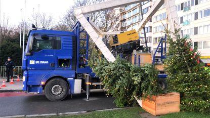 Oeps... Vrachtwagenchauffeur schat hoogte van kerstconstructie over Leopold II-laan verkeerd in