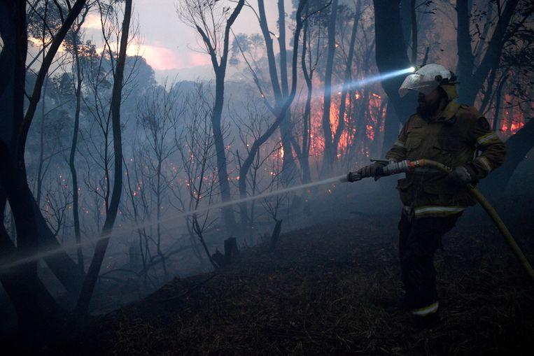 Het vuur trok de afgelopen dagen al door Woodford, New South Wales.