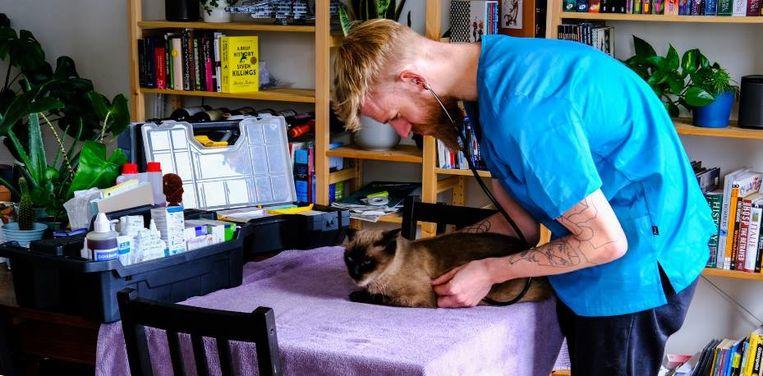 De dierenarts heeft meestal genoeg aan een tafel om uw huisdier eerstelijnszorg toe te dienen.