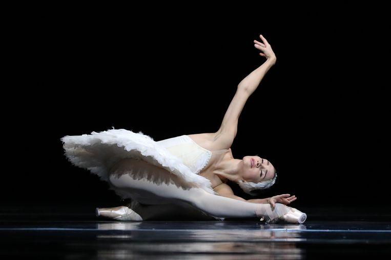 Anna Ol in 'De stervende zwaan' van Michail Fokine. Beeld Hans Gerritsen