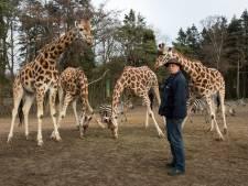 Ton (64) werkt al vijftig jaar tussen de wilde dieren