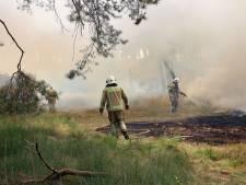 Verhoogd risico op natuurbranden door droogte in Brabant, maar niet in het noordoosten