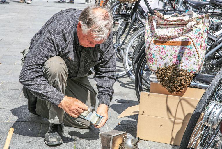 De bijen volgden de koningin en zetten zich vast op de fietstas. Een imker kwam ter plaatse.