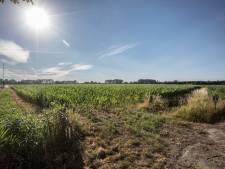 Geen fonds voor verlies op woningbouwplannen Aarle in Best