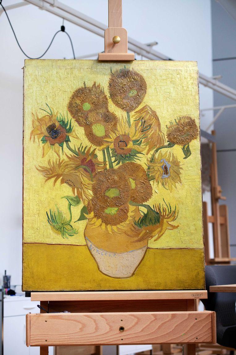 Zonnebloemen in het restauratie-atelier. Beeld ANP
