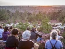Jubileum Nationaal Park Sallandse Heuvelrug: 'Zorg dat de schapen zich niet opgejaagd voelen'