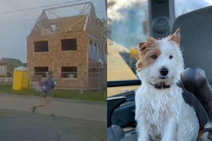 De man (L) die hondje Dribbel (R) doodstak, verdedigt zich via zijn advocate.