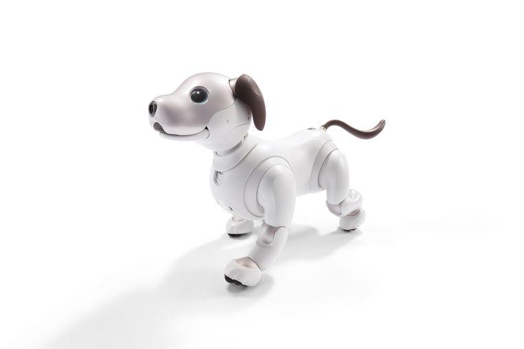 Aibo, het robothondje geproduceerd door Sony. Beeld Sony