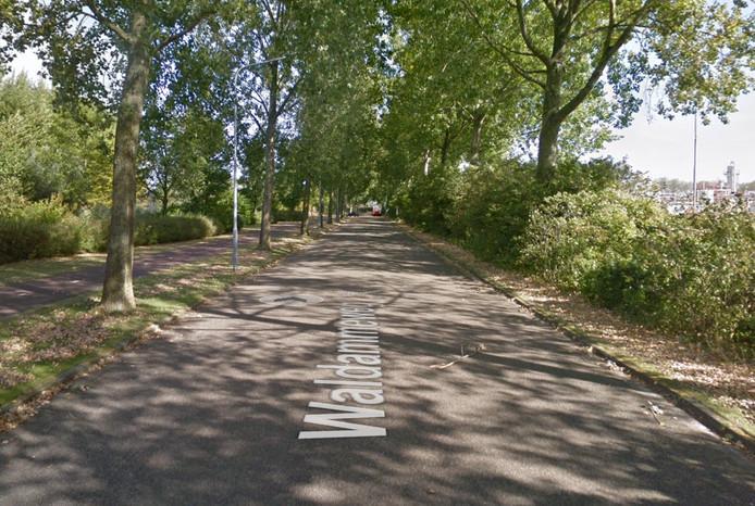 De Waldammeweg in Middelburg.