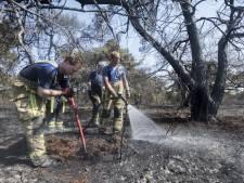 Cas (15) ontdekt natuurbrand Tubbergen: 'Die bomen leken net fakkels'
