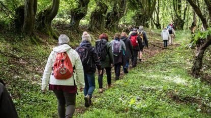 """""""Dat zijn Tomorrowland-toestanden"""": wandelclubs maken steile opmars dankzij grote events"""