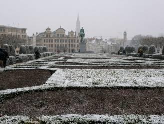 IN BEELD: Ook in Brussel en omstreken sneeuwpret!