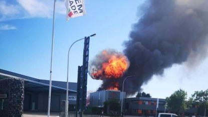 Zware industriebrand in Wijnegem: brand na veel moeite door hitte onder controle, één lichtgewonde