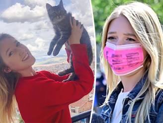 Hoe de soap rond katje Lee in een week ongeziene proporties aannam (en hij is nog niet afgelopen)