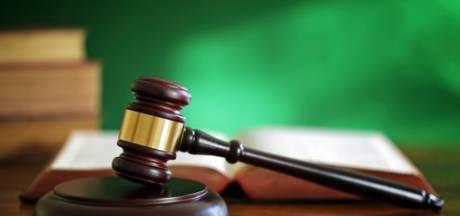 Taakstraf voor Wijk en Aalburger na fataal ongeval op polderweg in de Biesbosch