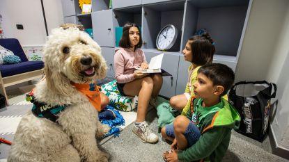 Kinderen lezen beter met een hond, want die zeurt niet over fouten