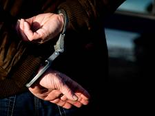 Schennispleger aangehouden in Almelo