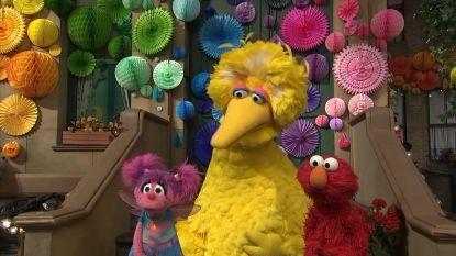 Bert en Ernie, Pino en co zijn jarig: 'Sesamstraat' blaast 50 kaarsjes uit