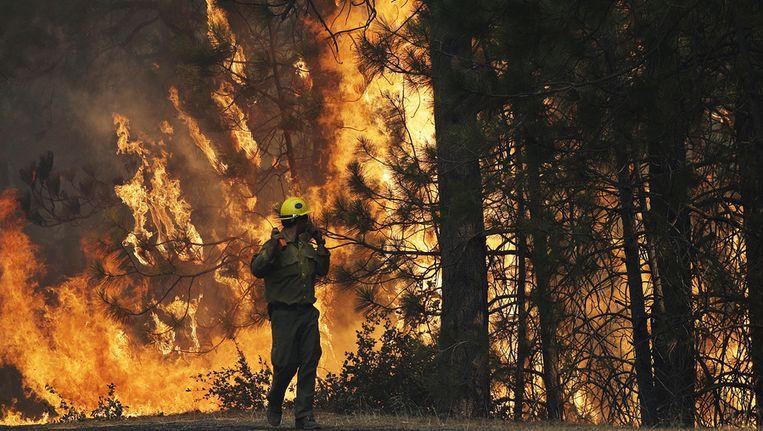 Een brandweerman observeert het vuur in het natuurpark Yosemite Beeld ap