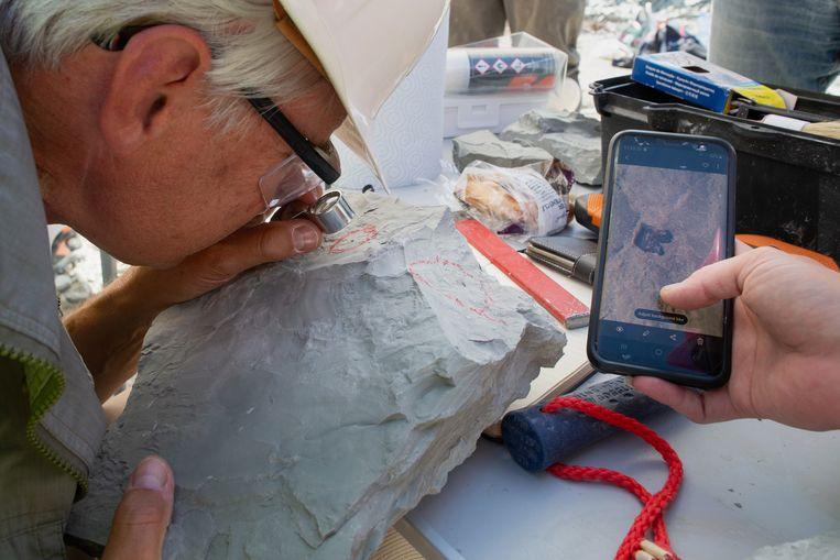 Met een loep onderzoekt Jelle Reumer een vondst, die vlak tevoren door een student op de smartphone is vastgelegd. Beeld Herman Engbers