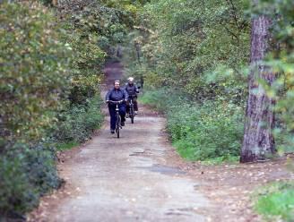 Deel van bomen in bos aan Heistraat wordt gekapt
