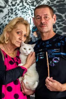 Dierenartsen zien het wekelijks: beestjes die net als kat Bello gruwelijk worden toegetakeld