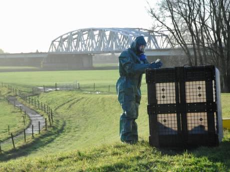 Gelderland gaat subsidie geven voor het opruimen van gedumpt drugsafval