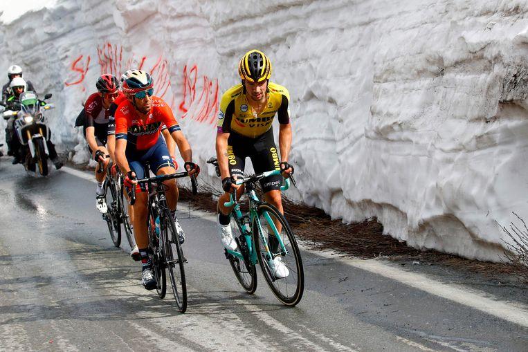 Roglic en Nibali in de achtervolging.
