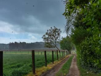 KMI voorspelt vanavond opnieuw rukwinden van 80 km/uur of meer
