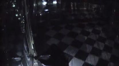 Politie geeft beelden vrij van twee dieven die met zaklampen kunstroof van de eeuw plegen