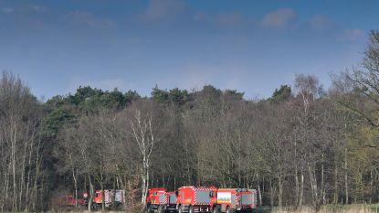 Vijf hectare heide verwoest