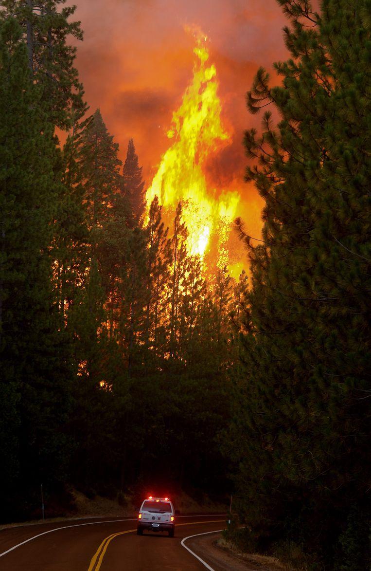 De brand bezien vanaf de snelweg die naar het natuurpark leidt Beeld EPA