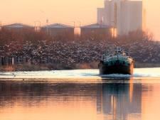 Dorpsraad voor rechtbank:  'Ook natuur Brouwhuis lijdt onder mest Den Ouden'