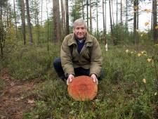 Nieuwe natuurbegraafplaats op Veluwe: 'Lekker ruim liggen' in het bos bij Elspeet