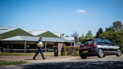 """""""Geen indicaties van besmette nertsen in Belgische nertsenbedrijven"""""""