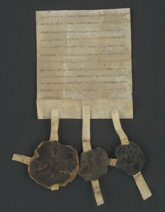 Charter uit 1269 met oudste vermelding van naam Loon op Zand.