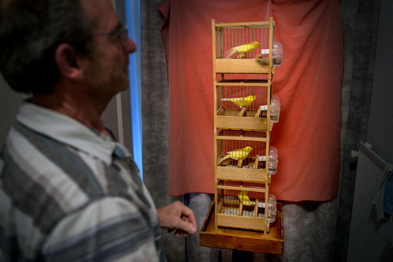 Willy Kling maakt in de gang van zijn woning in Wijchen een hoekje klaar waar hij de kanaries kan opzetten en kan afluisteren.