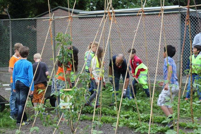 Er worden vooral nog vrijwilligers met groene vingers gezocht. Foto ter illustratie.