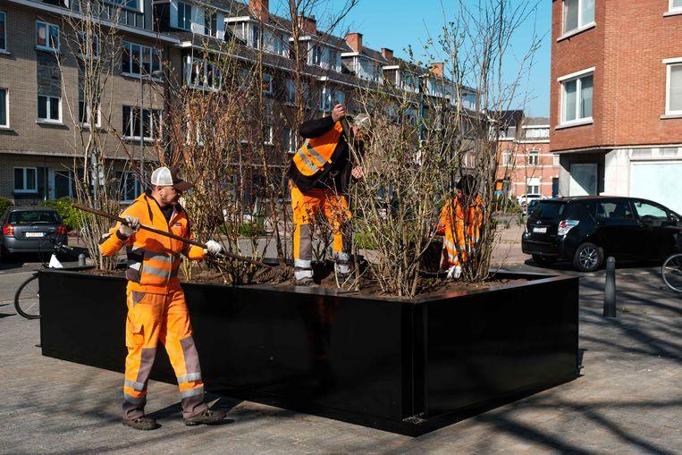 Via het plaatsen van 21 mobiele pop-upparkjes wil de Stad Hasselt verharde plekken, op z'n minst tijdelijk, van groen voorzien.