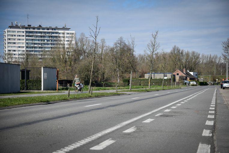 De Kroonveldlaan in Dendermonde  is leeg.