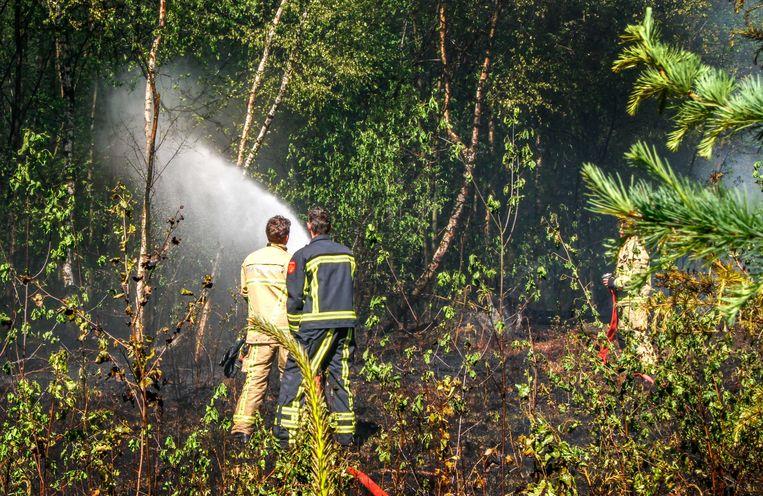 Naast camping 't Grasbroek in Bornerbroek, bij Almelo, is een bosbrand uitgebroken. Voor het bluswerk haalt de brandweer, die met veel eenheden is uitgerukt, water uit de recreatieplas die bij de camping hoort.  Beeld ANP