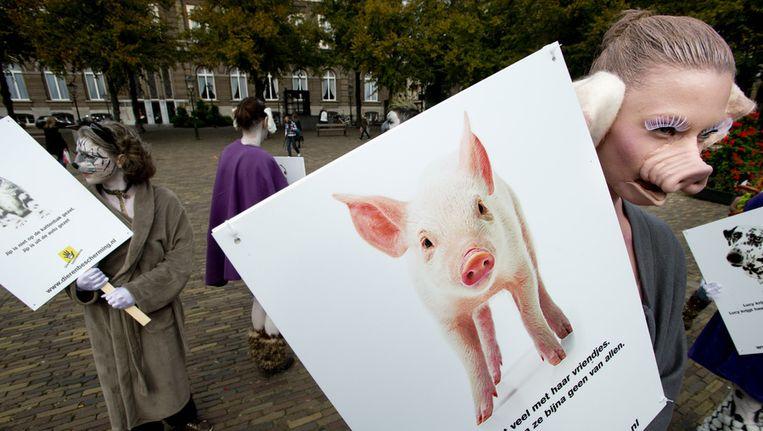 Actievoerders van de Dierenbescherming demonstreren op het Plein in Den Haag Beeld ANP