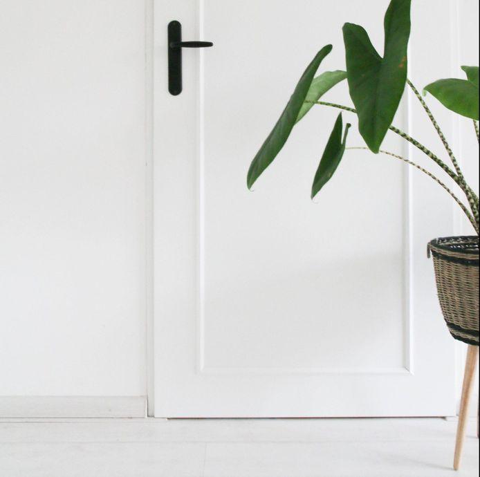 Van der Kooij koos voor een grote rechthoek op haar deur en zwarte deurklinken.