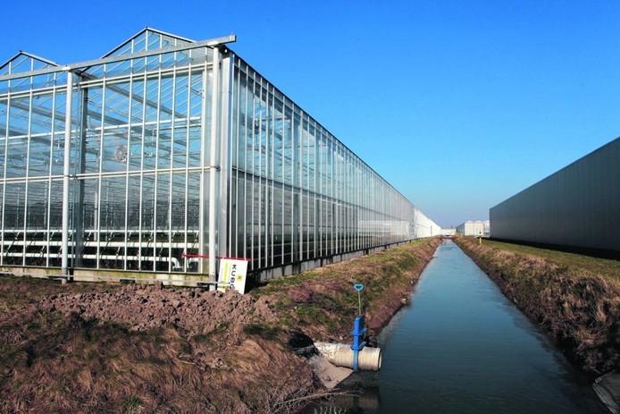 Glastuinbouwgebied Bergerden.