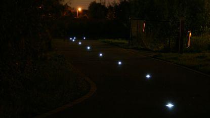 Weg met lantaarnpalen, hier zijn de lichtbakens: Ruien en Ronse zijn testgebied voor nieuwe vorm van verlichting op fietssnelwegen