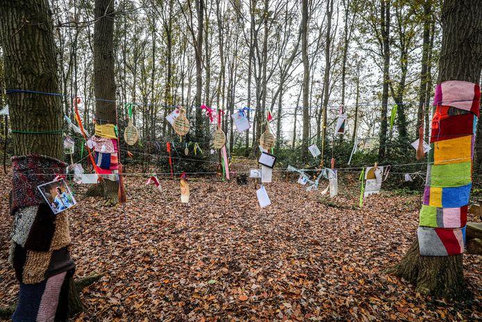Wensboom in de Steenbrugge bosjes